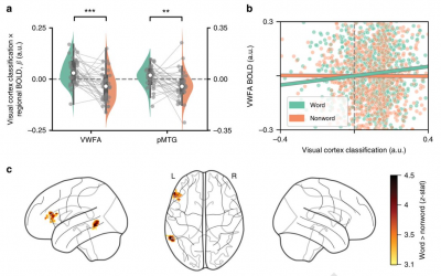 Paper published on context effects in letter perception