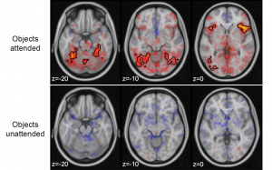 Statistical learning attenuates visual activity only for attended stimuli