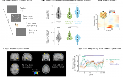 Paper published on neural mechanisms for implicit context learning